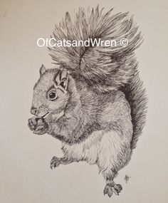 A Gallery Of The Original Wildlife Artwork Produced By Cats And Wren Designs Watercolours Pen Ink Embroidery