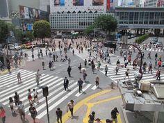 Het Hachiko kruispunt is vernoemd naar de hond die nog jaren na de dood van zijn baas tevergeefs bij het treinstation wachtte op zijn terugkomst.