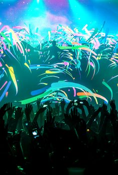 #Tomorrowland#Edm#Festivals|Wachka|Online Dj Store |Controllers|Edm Production Gear| Dj Equipement|Controllers {Check Our Chop Section For a Great selection Of Dj Gear And Edm Music Production Equipment.Or Our Blog For Some Product Reviews,Djing Tips,News....} Wachka.com Fb Page: https://www.facebook.com/pages/Wachka/354605584747827?fref=ts
