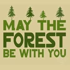 The force of the forest!