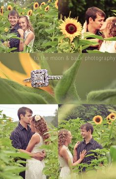 An engagement shoot in a sunflower field!