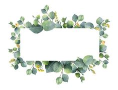 Watercolor vector wreath with green eucalyptus leaves and branches. royalty-free watercolor vector wreath with green eucalyptus leaves and branches stock vector art & more images of art Wreath Watercolor, Watercolor Flowers, Watercolor Paintings, Green Watercolor, Flowers Wallpaper, Wallpaper Backgrounds, Branch Vector, Eucalyptus Leaves, Illustration