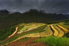 Vietnam 2016 - www.janazeithammerova.com