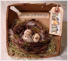 Berry Basket nest ~ the-feathered-nest.blogspot.com