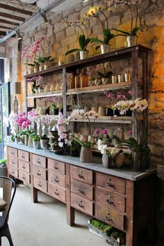 Merchandising - Boutique - fleuriste - Eric Chauvin Flower Shop, Paris, France (Lovely concept for inside a greenhouse, shelves, counter and drawers) Paris Shopping, Garden Shop, Display Design, Display Wall, Display Shelves, Store Design, Orchids, Sweet Home, Inspiration