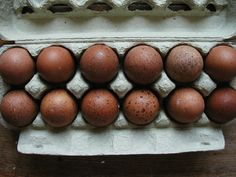 Welsummer eggs. Makes me sad as my fertilized eggs arrived in pieces, so, no Welsummer hens for me. I salve myself with the thought that they all were roosters.
