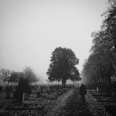Shadowy encounters  #halloween #blacknwhite #blackandwhite #monochrome #cemetery #spooky #ghost #scary #shadows #autumn #fall #trees #graves #london #whpspooky #fog #strangers #contrast #morning by skipsmuseum