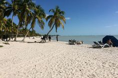 Top 5 Beaches in the Florida Keys