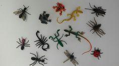 Insectes i rèptils
