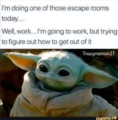 Yoda Meme, Yoda Funny, Work Memes, Work Humor, Funny Quotes, Funny Memes, Hilarious, Jokes, Funny Shit