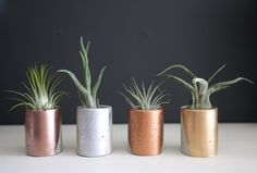 30 Cheap Gifts That Look Like A Million Bucks #refinery29  http://www.refinery29.com/2016/11/131180/inexpensive-christmas-gifts#slide-17  Doesn't every succulent deserve to live in a gilded concrete planter? Birch Bear And Bee Mini Concrete Succulent Planter, $8, available at Etsy. ...