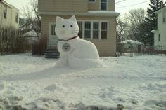 the biggest snow cat ever