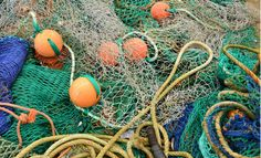 It's all hands on deck to save seafood supply chains with sustainable seafood SeaPact