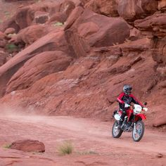 Badass Mini Bike Kits: How to get your kid started early Custom Motorcycle Helmets, Cruiser Motorcycle, Women Motorcycle, Custom Harleys, Motocross Racing, Motocross Bikes, Auto Racing, Supermoto Racing, Ktm 450 Exc