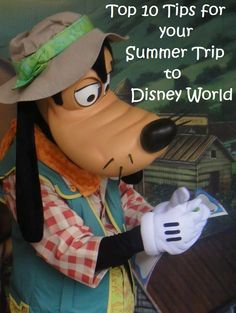 Top 10 Tips for your Summer Trip to Disney World, in Florida.  Click this pin or go to http://www.buildabettermousetrip.com/disney-world-summer-tips