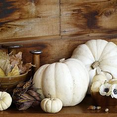 While traditional fall colors and themes remain popular,this year autumn decorating is all about Non-Traditional Colors.Non-Traditional Colorful Décor Ideas For Fall so warm and inviting. White Pumpkins Wedding, Pumpkin Wedding, Fall Wedding, Wedding Ideas, Trendy Wedding, Wedding Rustic, Wedding Images, Halloween Food For Party, Fall Halloween