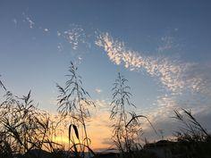 秋の夕暮れ