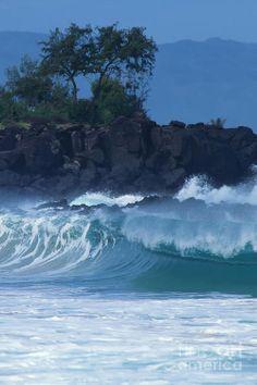 Waimea Shore Break by Tom and Anne Foster