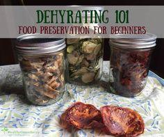 dehydrating food