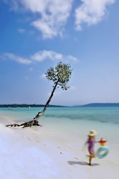 Havelock, Andaman Islands, India