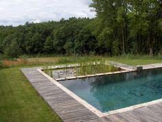 Ecologische zwemvijver