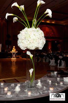 Wed101 - Chicago Wedding Venues - Sheraton Suites Chicago Elk Grove - 688, Chicago Wedding Venues, Chicago Banquet Halls,