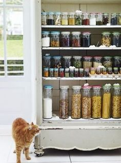 This is EXACTLY what I need by my baking island to hold my 75 different seeds, nuts, flours, etc.