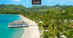With a gorgeous white sand beach, gourmet dining across 3 resorts, opulent rooms, unlimited drinks, exciting watersports & more, choose Sandals Halcyon as your next luxury tropical escape.
