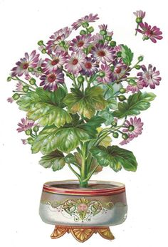 Victorian Die Cut Scrap Vase of Geraniums