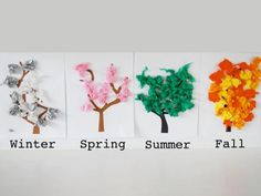 Cool project from http://www.kiwicrate.com/projects/Four-Seasons-Tree-Pictures/1046: Four Seasons Tree Pictures