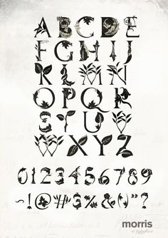 Typography Served - AIGA Member Gallery  Morris Typeface  by Stephen Collier
