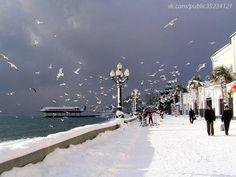 Ялта Крым Зима