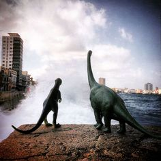 Photographer and wold traveler Jorge Saenz didn't forget to photograph his travel partners -- toy dinosaurs. Sanez photographed the dinosaur tourists at a specific angle to make them look as if they're towering over the landscape. Dinosaur Images, Dinosaur Toys, Photography Words, Toys Photography, Creative Photos, Great Photos, Creative Art, Jurassic World Dinosaurs, Colossal Art