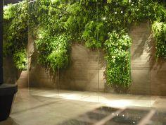 Verde Profilo Vertical Garden #verdeprofilo #vertical #garden #green #wall #nature