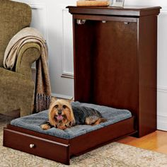 Pet Murphy Bed Pull-down pet bed saves space, looks good!