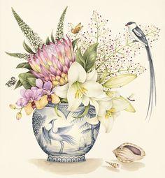 Limited edition prints - kelly higgs sweet water colour в 20 Art And Illustration, Illustrations, Art Floral, Botanical Flowers, Botanical Prints, Watercolor Flowers, Watercolor Art, Sibylla Merian, Decoupage
