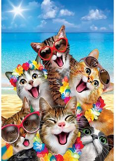Group Of Cats, Flag Store, Custom Flags, Cat Selfie, Beach Gardens, Outdoor Flags, House Flags, Garden Flags, Animales
