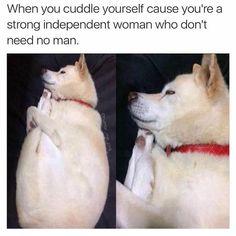 Animal Memes That Will Definitely Make You Smile - 24