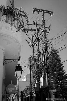 Poteaux électriques 1