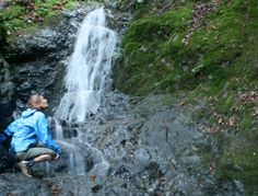 Waterfall Loop Trail at Uvas Canyon County Park   Weekend Sherpa