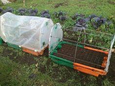 Cómo hacer un semillero con invernadero incluido paso a paso