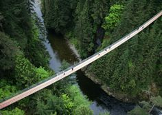 Canada's Capilano Suspension Bridge was voted the 6th scariest bridge in the world in 2010 by Travel and Leisure. This is due both the the bridge's height and to the fact that it shakes as you walk across it.