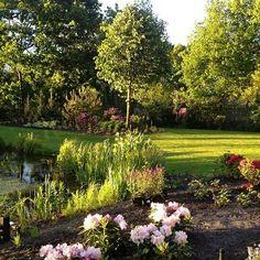 Particuliere tuin aangeplant door onze hoveniers. #tuin #hoveniersbedrijf #beplanting #gazon #groen