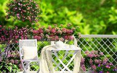 Обои цветы, flowers, веранда, чай, garden, природа, сад, кофе, coffee, grass, veranda, трава, nature, tea
