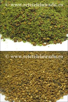 Green and red za'atar Spice Blends, Salads, Spices, Appetizers, Herbs, Mai, Green, Dips, Fine Dining