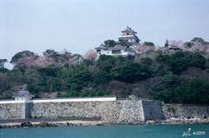 okinawan castles | Kokusai International Travel, Inc.