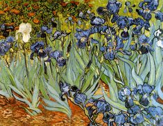 Irises - painted by Vincent Van Gogh while he was staying at the asylum at Saint Paul-de-Mausole in Saint-Remy-de-Provence  in the year before his death in 1890.