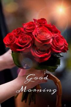 [Good morning love] Latest good morning images for love ~ Good morning inages Good Morning Sister, Good Morning Roses, Good Morning My Love, Good Morning Picture, Good Morning Sunshine, Morning Pictures, Morning Wish, Good Morning Happy Sunday, Blessed Sunday
