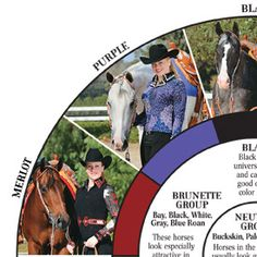 Winning Colors Chart- Helps you find colors that look flattering with your horse's coat. You can also virtually try on different colors!