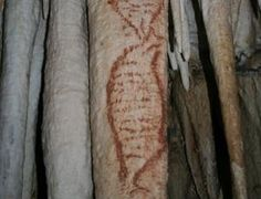 Cave paintings in Malaga, Spain, could be the oldest yet found – and the first to have been created by Neanderthals.